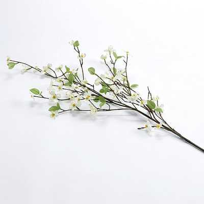 Dogwood Stems - Set of 3 - Ballard Designs