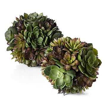 Succulent Ball - Z Gallerie