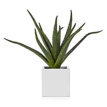 Faux Aloe Plant - Z Gallerie