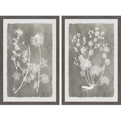 'Herbarium Study Diptych' 2 Piece Framed Graphic Art Print Set - Wayfair