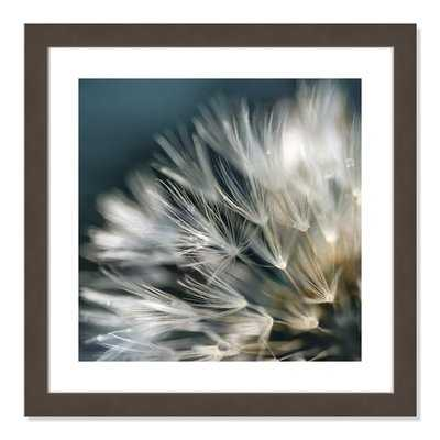 'Dandelion Dreams I' Framed Graphic Art Print - Wayfair