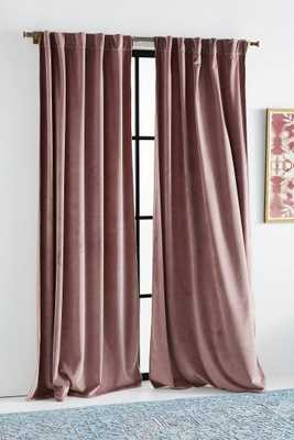 Velvet Louise Curtain - Anthropologie