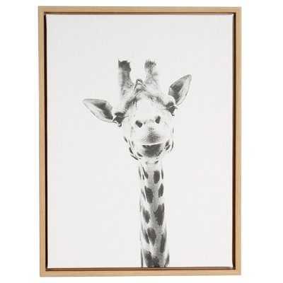 'Giraffe Portrait' Framed Graphic Art Print on Canvas - Wayfair
