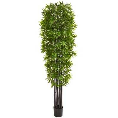 Artificial Bamboo Tree in Pot - Wayfair
