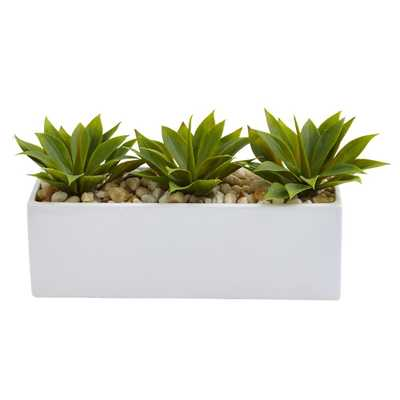 7 in. Agave Succulent in Rectangular Planter - Home Depot