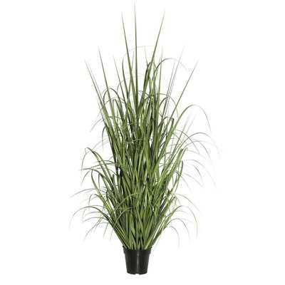 Floor Grass in Pot - Wayfair