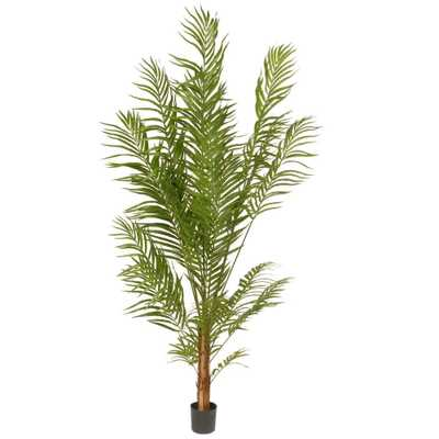 5.8 ft. Deluxe Areca Potted Palm Tree, Green - Home Depot