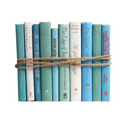 Authentic Decorative Books - By Color Modern Ocean ColorPak (1 Linear Foot, 10-12 Books) - Wayfair