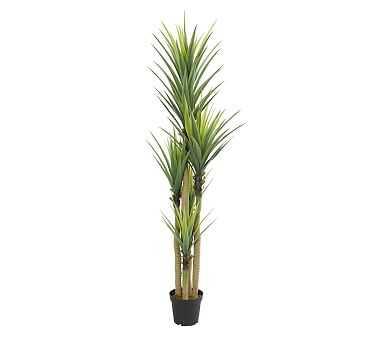 Tri-Stalk Dracaena Faux Plant, 7' - Pottery Barn
