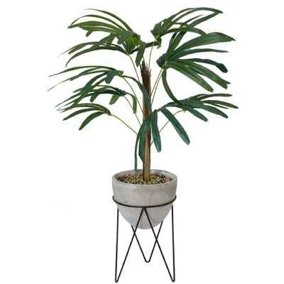 Palm Tree in Planter - Wayfair