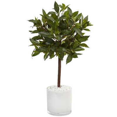 Indoor Sweet Bay Artificial Tree in White Glossy Cylinder - Home Depot