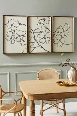 Dogwood Triptych Wall Art - Anthropologie