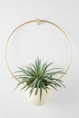 Brass Spora Hanging Planter - Anthropologie
