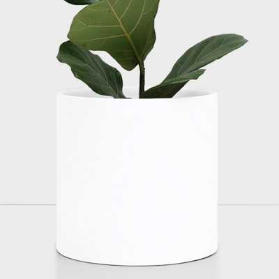 Peach & Pebble 12 in. White Ceramic Indoor Planter (7 in. to 12 in.), Matte White - Home Depot