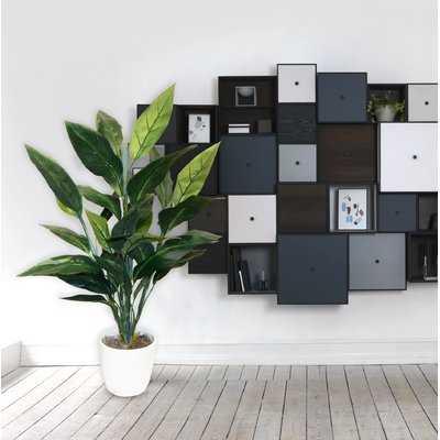 Bird of Paradise Floor Foliage Plant - Wayfair