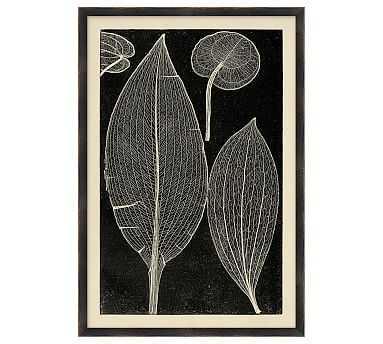 Leaf Detail 2 - 15 x 22 - Pottery Barn