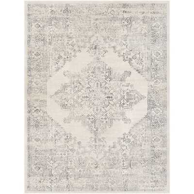 Mac Distressed Traditional Charcoal/Ivory Area Rug - Wayfair