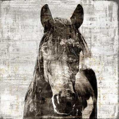 'Winter Stallion' Framed Graphic Art Print on Glass - Wayfair
