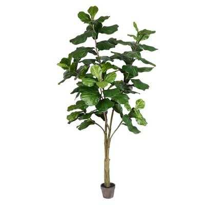 "Artificial Potted Fiddle Tree in Pot, 60"" - Wayfair"