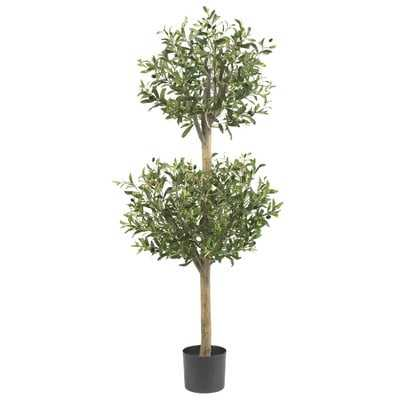 Olive Tree Topiary in Pot - Birch Lane