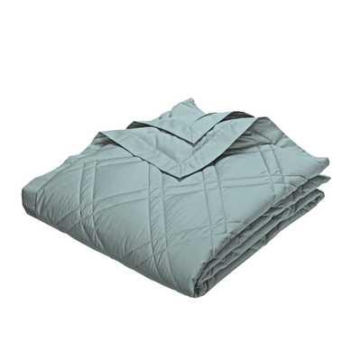 PrimaLoft Deluxe Down Alternative Cloud Blue Queen Classic Blanket - Home Depot