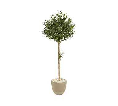 Faux Olive Topiary Tree In Sand Planter, 5' - Pottery Barn