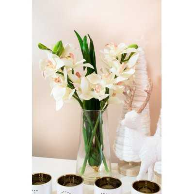 Cymbidium Orchid Floral Arrangement in Vase - Birch Lane