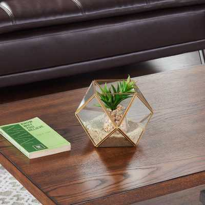 Polyhedral Brass and Clear Glass Terrarium Decorative Vase - Home Depot