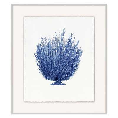 Coral Branch, Series 4 - Williams Sonoma