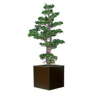 Bonsai Tree in Metal Planter - Wayfair