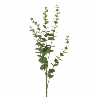 Eucalyptus Branch - Wayfair