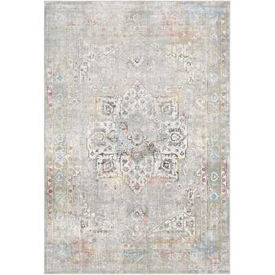 "Karyn Traditional Gray/Light Blue Area Rug - 6'9"" x 9'6"" - Wayfair"