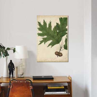 'Oak Leaves & Acorns II' Graphic Art Print on Canvas - Wayfair