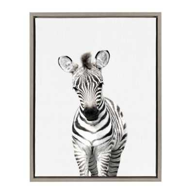 "Kate & Laurel 24""x18"" Sylvie Baby Zebra Animal Print Portrait By Amy Peterson Framed Wall Canvas Gray - Target"
