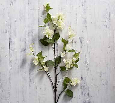 Faux Bougainvillea Branch, White - Pottery Barn