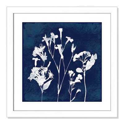 'Cyanotype Botanical II' Framed Graphic Art Print - Wayfair