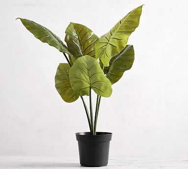 Faux Potted Philodendron Houseplant, Large - Pottery Barn