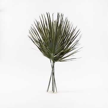 Dried Palm Leaf, Green - West Elm