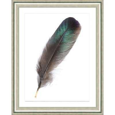 'Blue Feather III' Framed Graphic Art Print - Wayfair