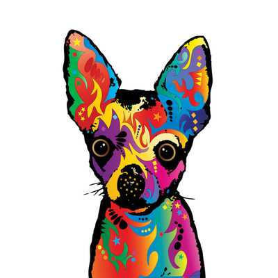 Rainbow Chihuahua on White Graphic Art on Wrapped Canvas - Wayfair