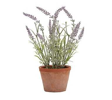 Faux Potted Lavender - Small - Pottery Barn