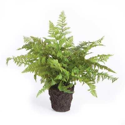 Soft Fern Drop-In Faux Plant - Wayfair