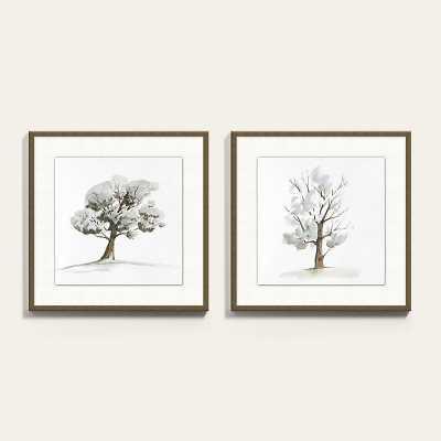 "Park Tree Art  18"" x 18"" - Ballard Designs - Print 11 - Ballard Designs"