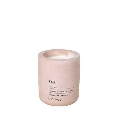 Fragra Scented Jar Candle - AllModern