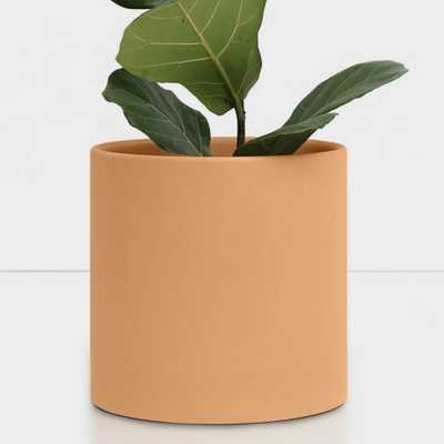 Peach & Pebble 10 in. Peach Ceramic Indoor Planter (7 in. to 12 in.), Pink - Home Depot