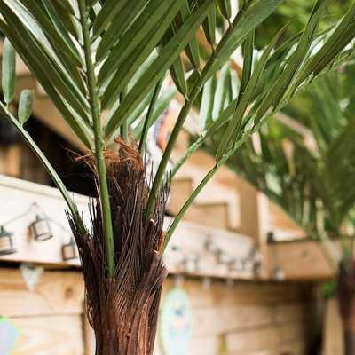 UV Kentia Palm Tree - Wayfair
