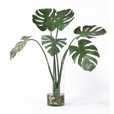 Split Leaves Foliage Plant in Glass Vase - Wayfair