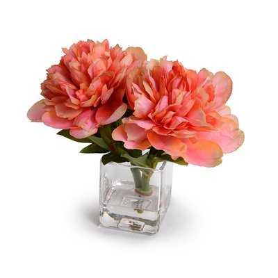 Coral Peonies Floral Arrangement in Vase - Birch Lane