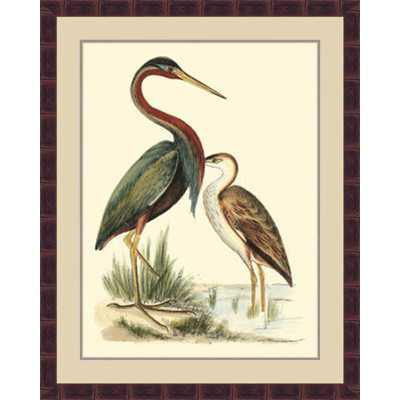 'Water Birds III' Framed Painting Print - Wayfair