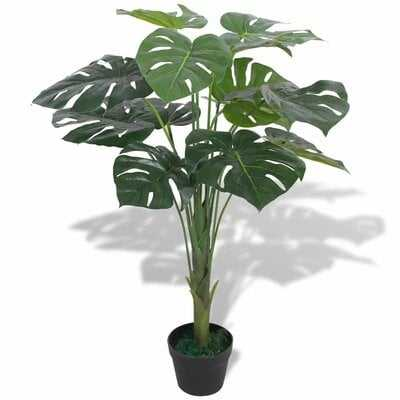 Monstera Foliage Plant in Pot - Wayfair